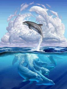 Dolphins in their DREAMS! http://www.pranashama.com http://www.dashama.tv