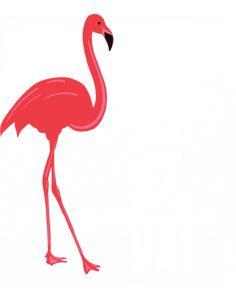 Your Online T-shirt Design Creator Legs Day, Tshirts Online, Flamingo, The Creator, Shirt Designs, Gym, Flamingo Bird, Flamingos, Greater Flamingo