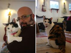Cats & Guitars: Jackson Galaxy's Personal Catification