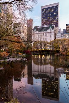 Central Park in the fall