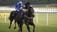 Meade hopes for more Aclaim  https://www.racingvalue.com/meade-hopes-for-more-aclaim/