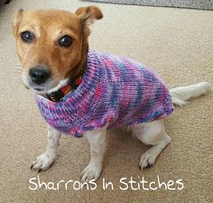 Check out this item in my Etsy shop https://www.etsy.com/uk/listing/508739750/handknitted-dog-jumper-dog-sweater-dog