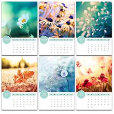 2014 calendar photography botanical 4x6 5x7 desk by mylittlepixels, $16.00
