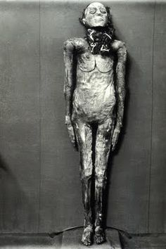 The mummy of Yuya thought by some to be Josua who, after Moses, led the Hebrews into the Promised land and logically would be the father-in-law of Amenophis III, at Cairo Museum, Egypt. (Photo by Patrick Landmann/Cairo Museum/Getty Images) Ancient Egyptian Artifacts, Ancient Aliens, Ancient History, Cairo Museum, Mummified Body, Egypt Mummy, Egyptian Mummies, Egyptian Mythology, Visit Egypt