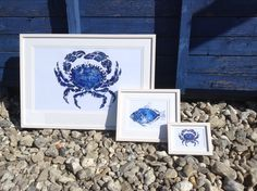 Our Crab,John Dory and little crab ,mounted and framed in British Lime wood,whitewashed and waxed.Available in different sizes.