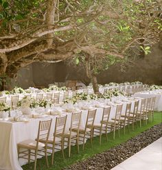 Bali wedding under the trees by Lisa Vorce