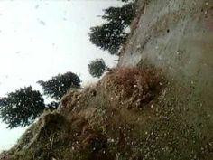 Snow fall in Shimla village(kufri)...