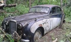 Stray Cat: 1957 Jaguar MK VIII - http://barnfinds.com/stray-cat-1957-jaguar-mk-viii/