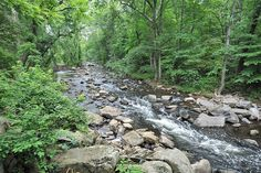 Pennsylvania creek