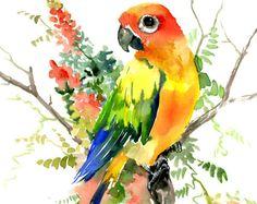 Sol Conure Perico y Hoya, uno original de un tipo de arte acuarela para mascotas aves, colores brillantes ilustración conure