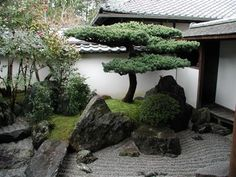 A small pine island in a Japanese courtyard garden. I like the way they edged the small hill with rocks -- this creates a natural look and prevents eventual errosion, as well as being very pretty!