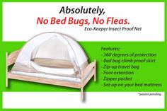 Can Bed Bugs Climb On P E T