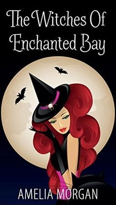 The Witches Of Enchanted Bay by Amelia Morgan  did not finish at 26%