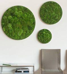 Kugelmoosbild rund - Gift For You Moss Graffiti, Plant Wall Decor, Moss Plant, Moss Wall Art, Moss Garden, Green Wall Art, Green Building, Tree Bookshelf, Wall Pictures