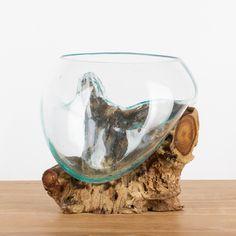 unikat skulptur - vase / schale glas auf teak - holz - wurzel ... - Massive Wurzel