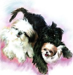 Come see my new site on Fine Art America Thank you for looking  #art #poems #quotes #paintings #spiritual #dog #puppy #book #apps