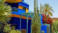 متطوعون يسعون بشغف للحفاظ على الحدائق في المغرب - BBC Arabic