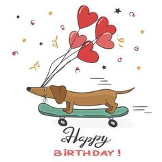 Greeting card with cute dachshund dog and balloons. Happy Birthday vector illustration.