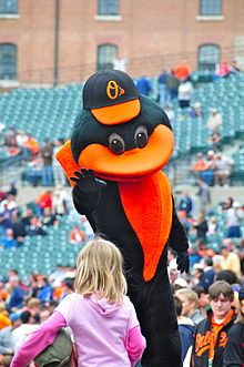 The Oriole Bird, official mascot since April 6, 1979