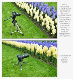 Statief gebruiken bij bloemen fotograferen
