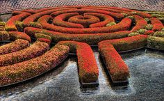 The Labyrinth in full bloom at the Getty Museum Gardens.