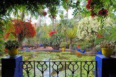 jardin majorelle marrakech yves st.laurent - Google Search
