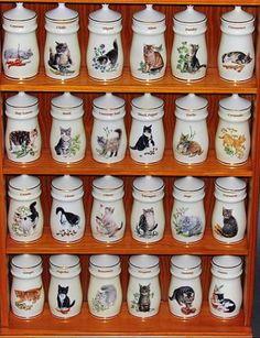 Lesley-anne-ivory-cat-pots-a
