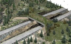 In a Wildlife Bridge was built over the Ontario highway between Sudbury and Parry Sound . a concept already in place in Banff National Park Sudbury Canada, Greater Sudbury, Civil Engineering Design, Beside Still Waters, Algonquin Park, Bridge Design, Pedestrian Bridge, Back Road, Wildlife Conservation