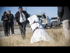Deaths at U.-Mexico Border Rise as Patrols Crack Down - Photos Community Jobs, Community Places, Community Activities, Ogden Museum, South Texas, Dallas Texas, Refugee Rights, Arizona, Refugee Crisis