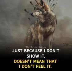 Joker Quotes, Word Up, Panther, Husky, Feelings, Dogs, Animals, Philosophy, Wisdom