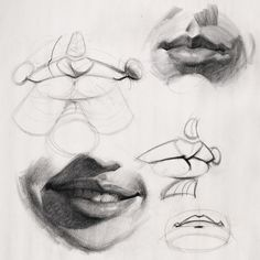 Here's an old demo on drawing lip structure. I have a video lesson about it at proko.com/10