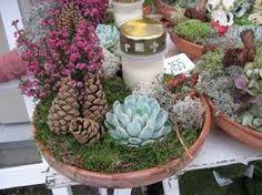 Výsledek obrázku pro gravsmyckning Ikebana, Succulents, Plants, Flora, Succulent Plants, Plant, Floral Arrangement, Planting