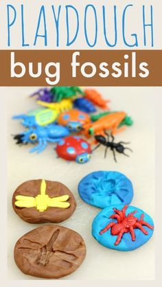 Playdough Bug Fossils Have fun making bug fossils with playdough. Published May 13, 2014 simple fossil activity for preschool. Make bug prints in playdough.