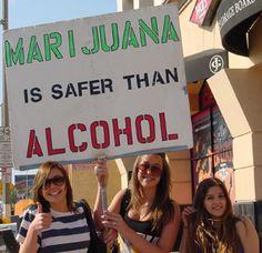 Up to 97% of Congress Is in Denial on Marijuana Legalization SemillasDeMarihuana.com