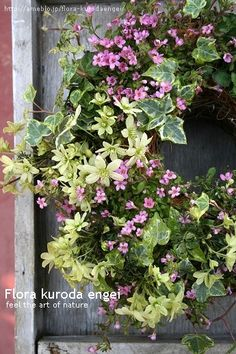 フローラのガーデニング・園芸作業日記-ピンクとグリーンのリース寄せ植え