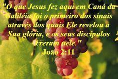 Pão Diário: João 2