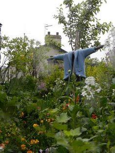 Peter's Rabbit garden
