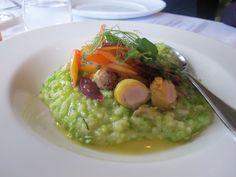 Eating Aotearoa: New Zealand on a Plate