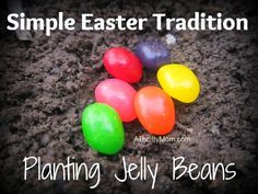Simple Easter traditions, planting jelly beans.  What a cute idea for little kids! I am always looking for things to do like this