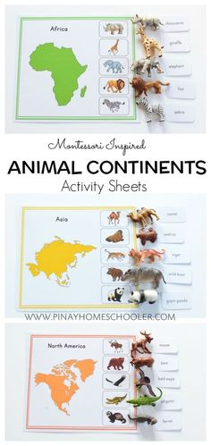 Animal continent sheets Informations About Montessori Inspired Animal Continents Activity Sheets Pin Montessori Preschool, Montessori Education, Montessori Materials, Preschool Learning, Kids Education, Preschool Activities, History Education, Teaching History, Homeschooling Resources