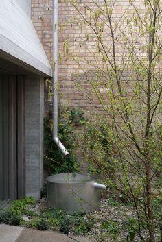 architects and Dan Pearson Studio, Juergen Teller Studio Architecture Details, Landscape Architecture, Landscape Design, Rain Garden, Water Garden, Rustic Gardens, Outdoor Gardens, Garden Furniture Inspiration, Dan Pearson
