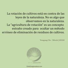 Excelente libro de agricultura natural con el que se logra gran éxito en las cosechas. Métodos low cost de agricultura. Movie Posters, Crop Rotation, Natural Farming, Book, Film Poster, Popcorn Posters, Billboard, Film Posters