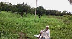 भगवान् को पत्र - एक किशान की दर्द भरी कहानी (A letter to God- A Farmer sad…