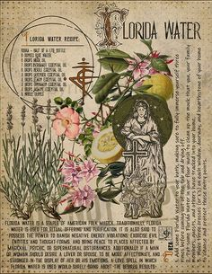 Book of Shadows page. Potioncraft (the making and use of magickal potions) has been a talent of most Witches since the earliest of times. Witchcraft Books, Green Witchcraft, Magick Spells, Magic Herbs, Herbal Magic, Florida Water, Witch Herbs, Witchcraft For Beginners, Baby Witch