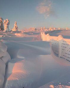 Winter wonderland ❄