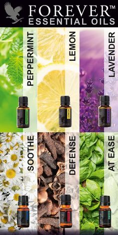 Unleash the power of the senses! #ForeverEssentialOils http://www.3000000151146.fbo.foreverliving.com/