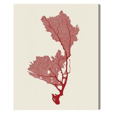 Oliver Gal Sea Coral Canvas Wall Art - CC15558_36X45_CANV_XHD_AR