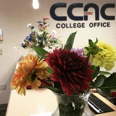 It's dahlia season again! A big thanks to Lucy in Planning and Institutional Research for sharing her garden's bounty with the #CCAC College Office!