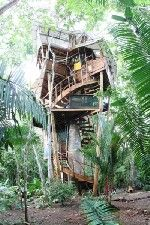 Stay in a tree house in Latin America