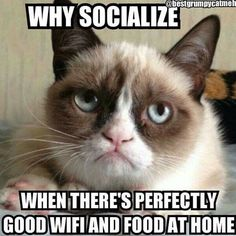 Why socialize when there's perfectly good wifi and food at home.